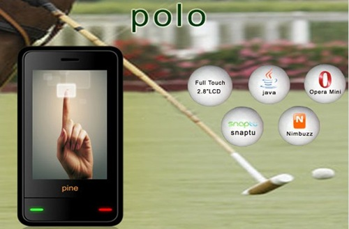 Pine-Polo