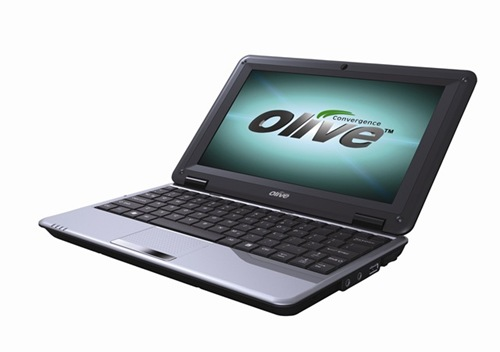 OliveZipBook